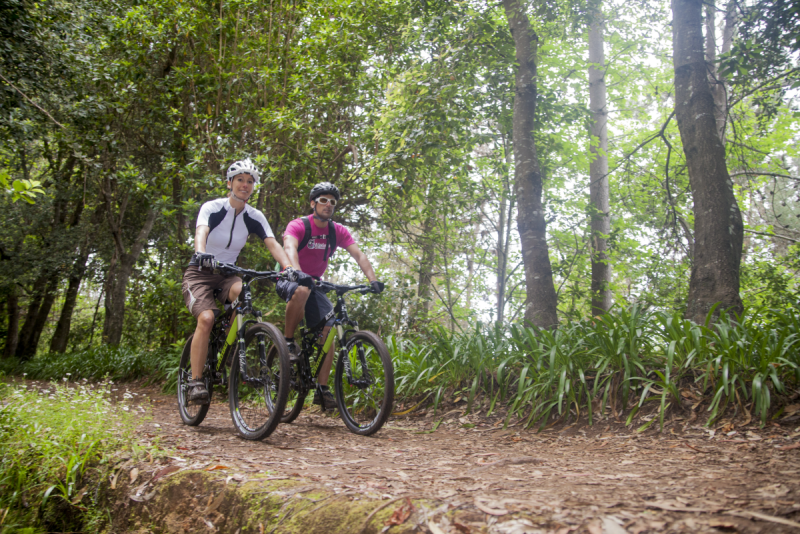 Mountain biking tour - Levada