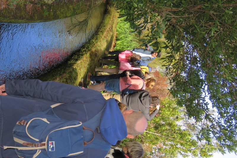 Private walk - Levada and 4x4 Tour