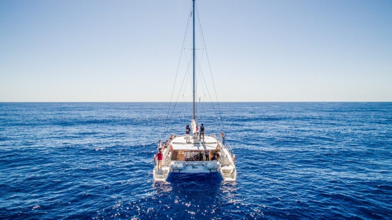 Catamaran Trips - Winter