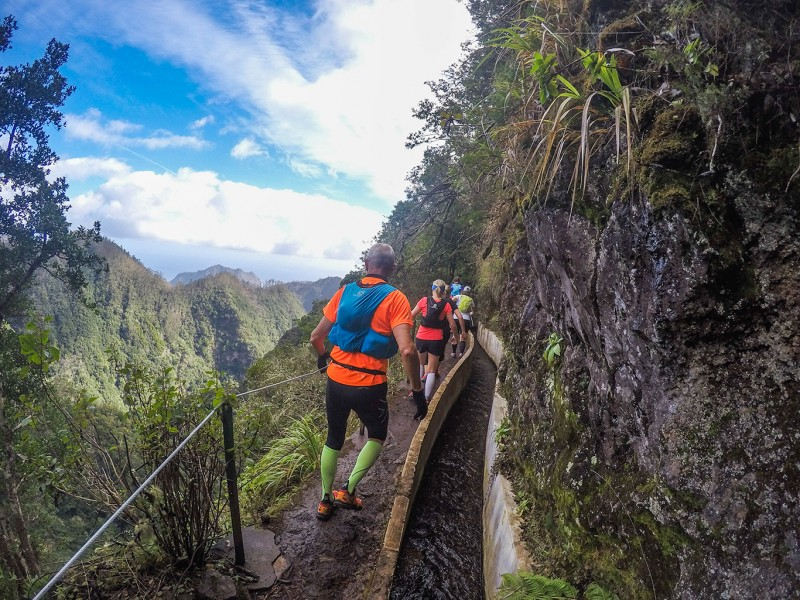 Green Levada Running Tour (Easy-Moderate)